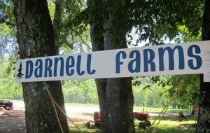 darnell-farms-sign-448wide-300x190